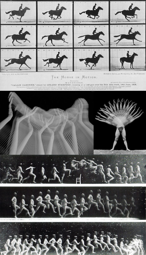 Peter jansen et Human motions - Eadweard Muybridge - the horse in motion